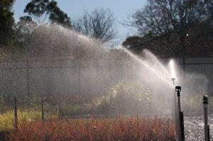 Installing Nursery Irrigation