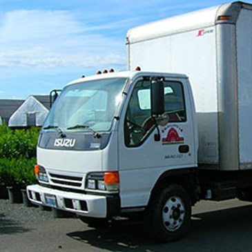 Wholesale Nursery Deliveries