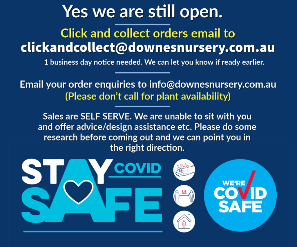 Downes Nursery Click and Collect orders
