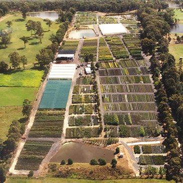 Downes Wholesale Nursery Sydney Aerial View